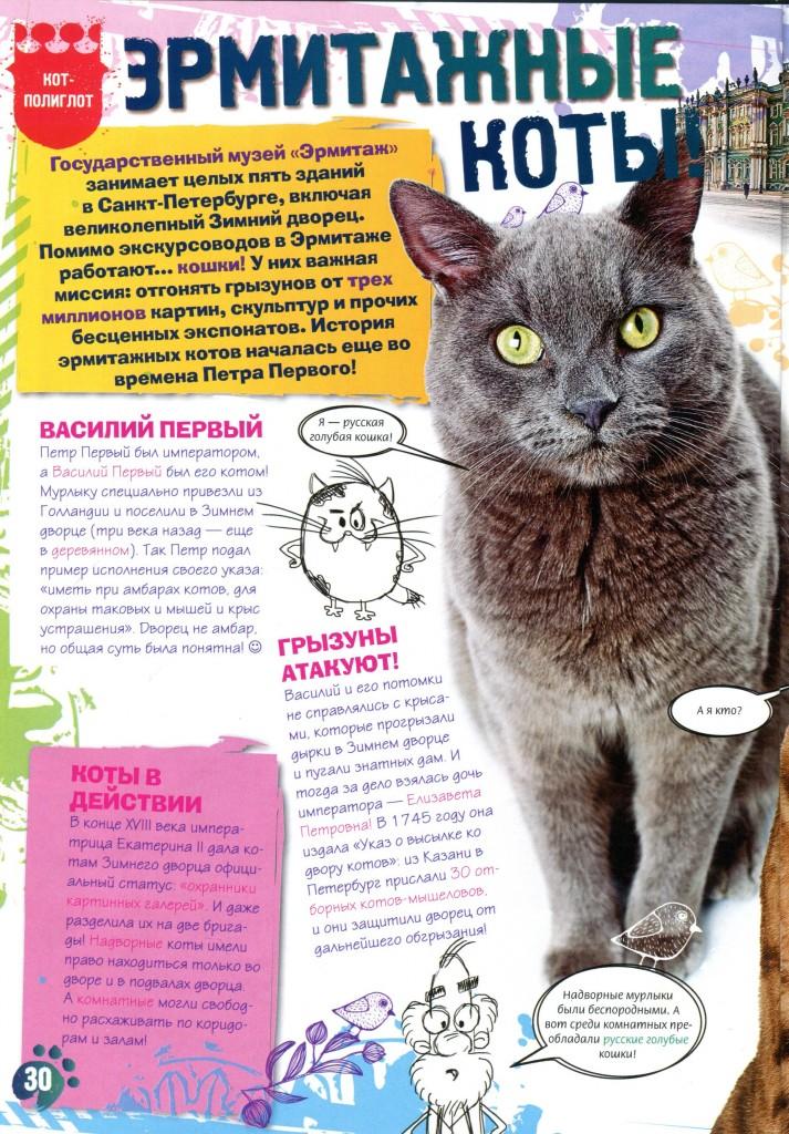 Коты эрмитажа открытки 9